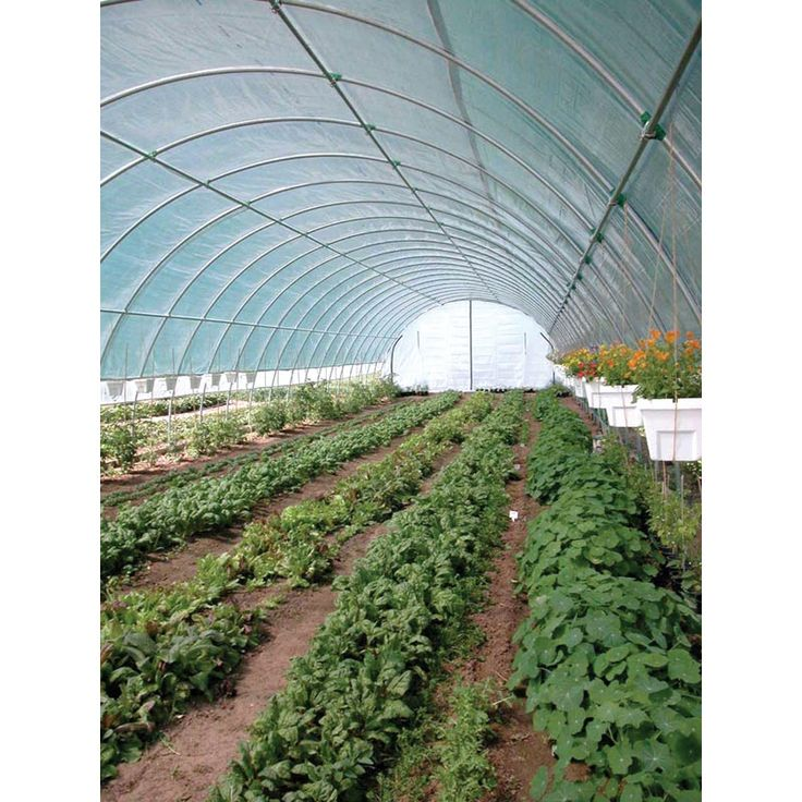 28 Best High Tunnels Images On Pinterest Conservatory