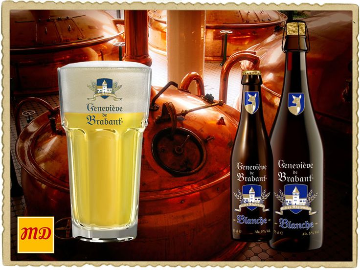 Beer Geneviève de Brabant Blanche. This beer Geneviève de Brabant Blanche is brewed from the finest ingredients, including wheat, as is typical for the best Belgian white beers. A touch of coriander gives it a subtle acidity. Blanche de Brabant tastes even better with a touch of lemon.