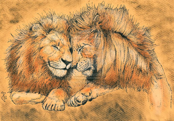 Leones by Phyreon7