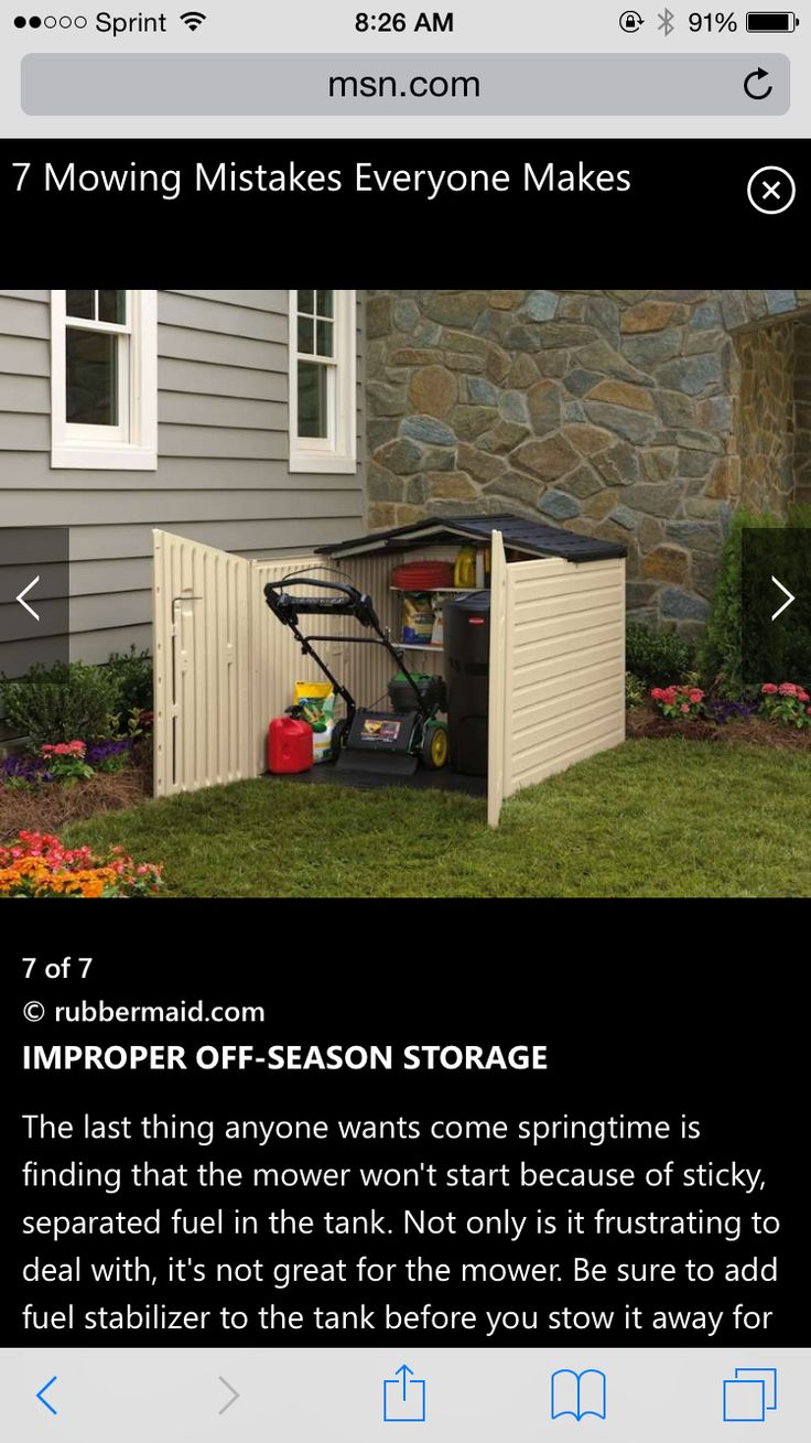8 best backyard ideas images on pinterest gardening plants and