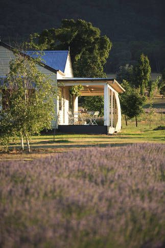 The Gatehouse at Barwidgee Farm | Bright, VIC | Accommodation