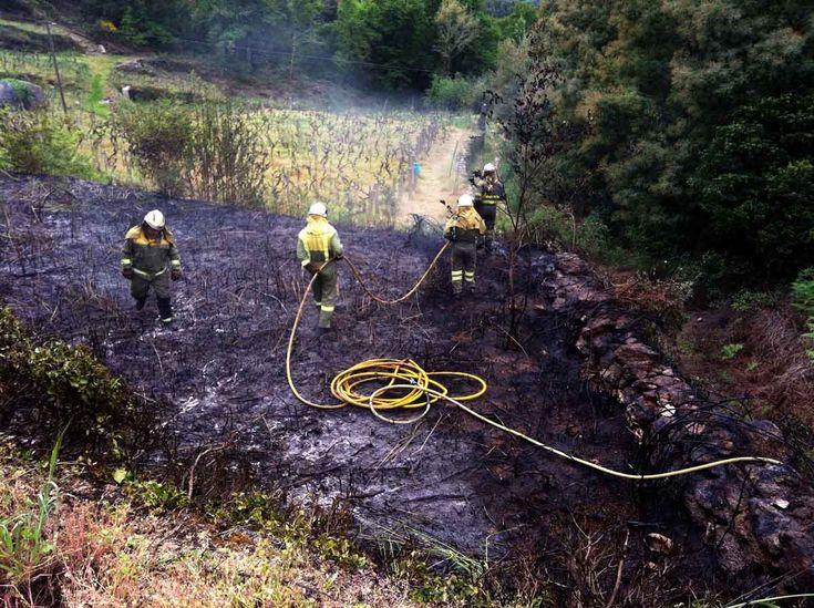 Conato de incendio forestal en abril de 2017. Aquí dando apoio as brigadas de incendios.