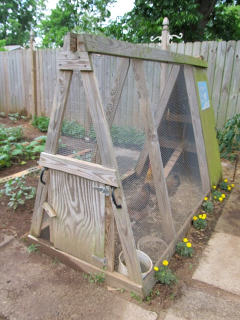 Small chicken coop for your new house. @Malinda Blevins