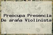 http://tecnoautos.com/wp-content/uploads/imagenes/tendencias/thumbs/preocupa-presencia-de-arana-violinista.jpg araña violinista. Preocupa presencia de araña violinista, Enlaces, Imágenes, Videos y Tweets - http://tecnoautos.com/actualidad/arana-violinista-preocupa-presencia-de-arana-violinista/