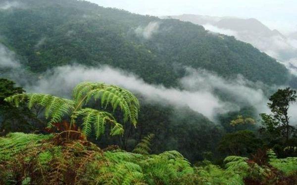 San Roque de Cumbaza, el nuevo paraíso para el turismo de aventura cerca de Tarapoto