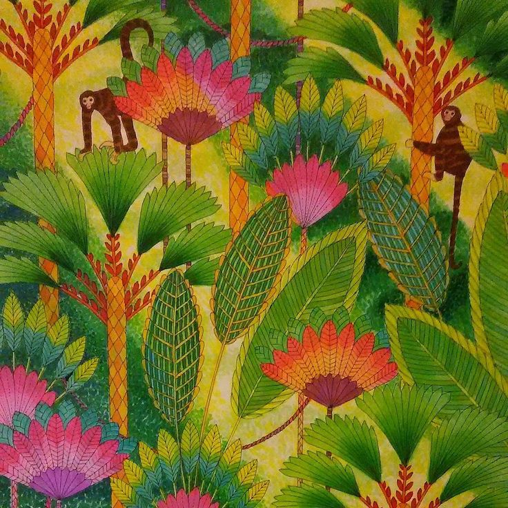 391 Best Images About Color Book Animal Kingdom Millie