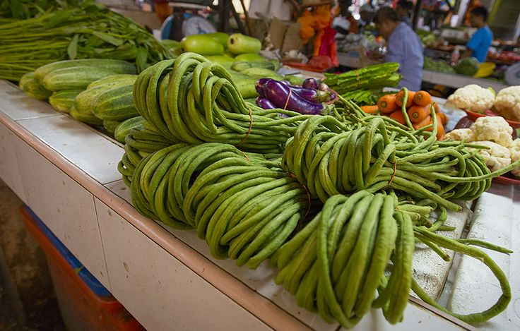 egzotyczne warzywa tropikalne owoce long green bean długa zielona fasola