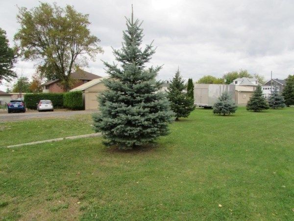 One acre +/- building lot. 307-309-311-317-319-323 MCCONNELL AVE