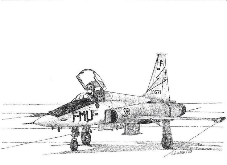 Pointillism. Thousands of 0.1 and 0.2 ink dots. RNoAF 338 sqn. F-5 fighter