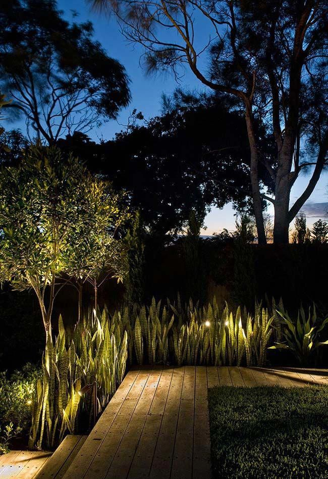 Wow Amazing Outdoor Lighting Ideas That Bring Magic Into The Backyard 4753993334 Outdoor Landscape Lighting Landscape Lighting Design Rustic Garden Lighting