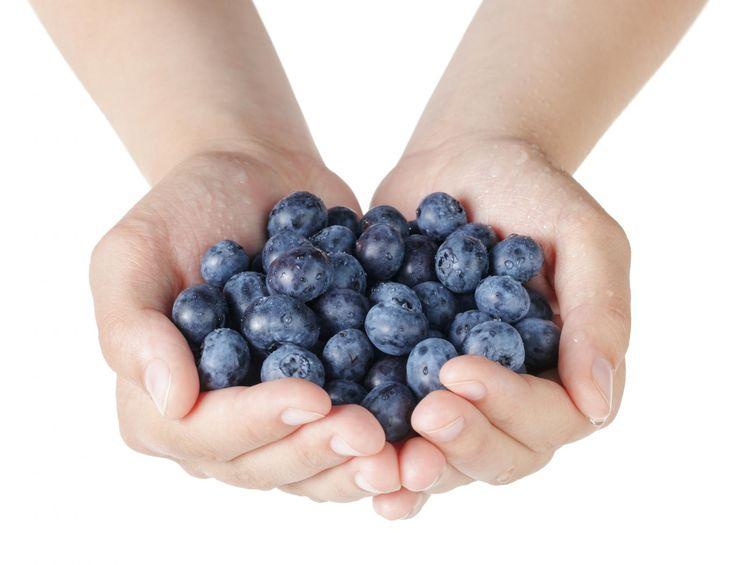 Consommer des myrtilles tous les jours permettrait de faire baisser l'hypertension artérielle en huit semaines chez les femmes ménopausées, selon une étude américaine.