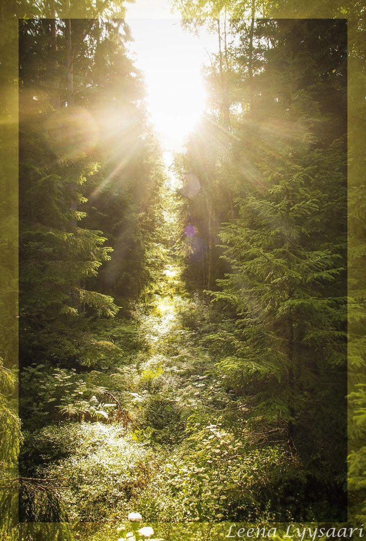 Holvikirkko, jonne auringonsäteet siivilöityy päätyikkunasta