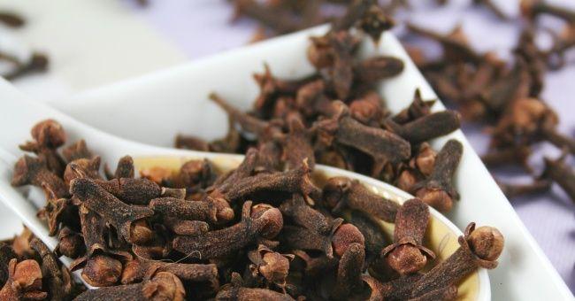 L'olio essenziale di garofano, antidolorifico DOC