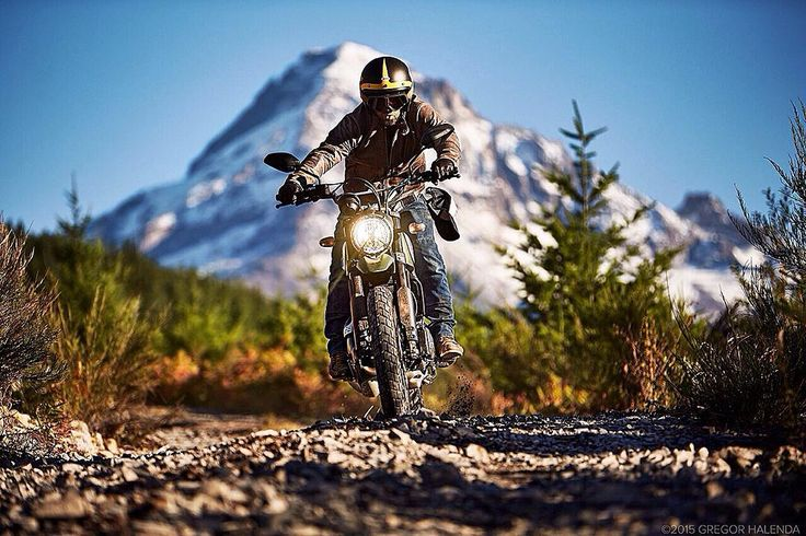 { Portland Roar }  Have you ever found yourself in the right place at the right time with the right people doing the most right thing in the World? We have! Stay tuned for the next shots of the Land of Joy in Portland Thanks @gregorhalenda for the great shot!  #scramblerducati #portland #wildlife #landofjoy by scramblerducati