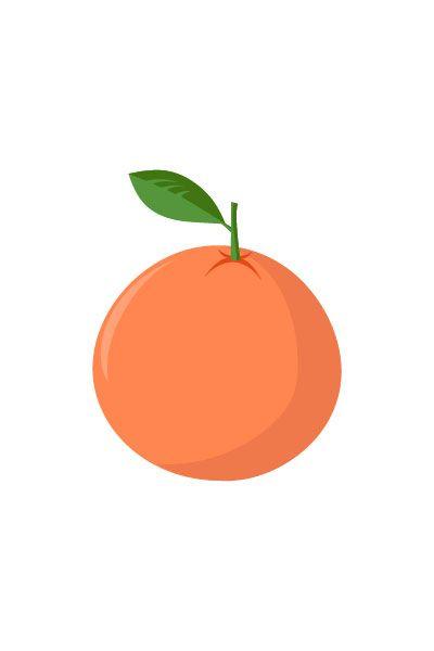 Tangerine Vector #tangerine #vector #fruits #handdrawvector http://www.vectorvice.com/fruits-vector