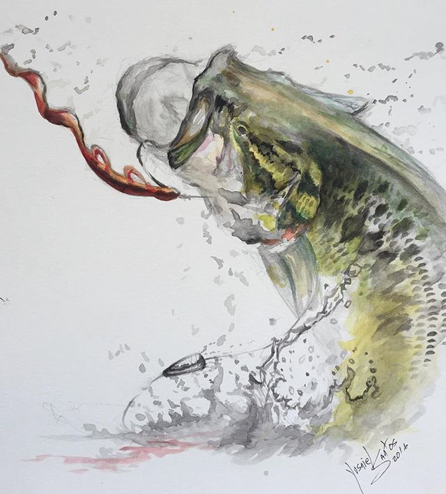 231 best images about bass fishin art for Bass fish painting