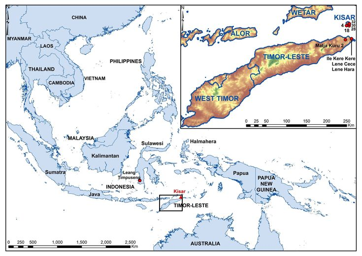 A tiny Indonesian island, previously unexplored by archaeologists, has been found to be unusually rich in ancient cave paintings following a study by researchers from The Australian National University (ANU).