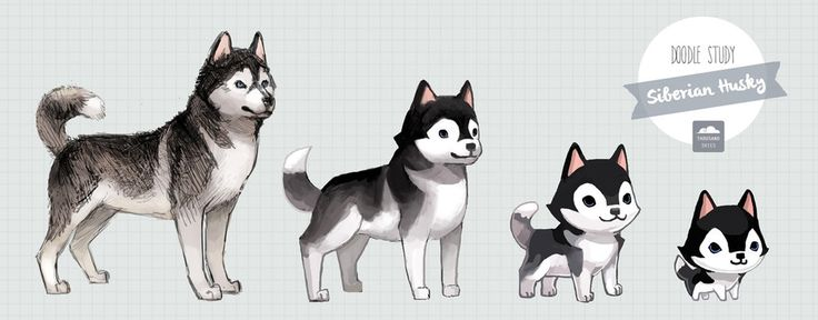 Dost Husky Blue by ethe on deviantART - A STEP BY STEP GUIDE (ish) on how to become kawaii ^^