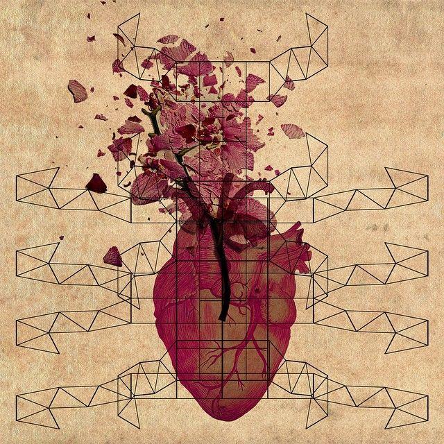 #JawboneToFinger #Design1o1Redux #illustration #diagram #heart #anatomy #death #onesecond Illustration: Diana Topan