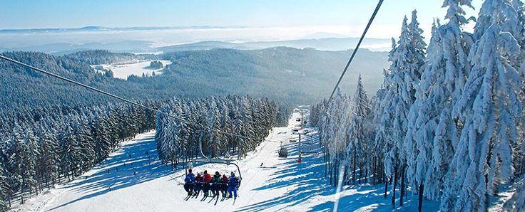 Skifahren in Oberösterreich/Mühlviertel - Familienskigebiet Sternstein Lifte. Alle Informationen zu #Skifahren im #Mühlviertel unter www.muehlviertel.at/skifahren