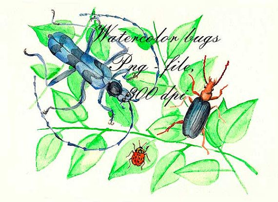 Watercolor bugs. Scrapbooking. PNG. от VectorGraphicArts на Etsy