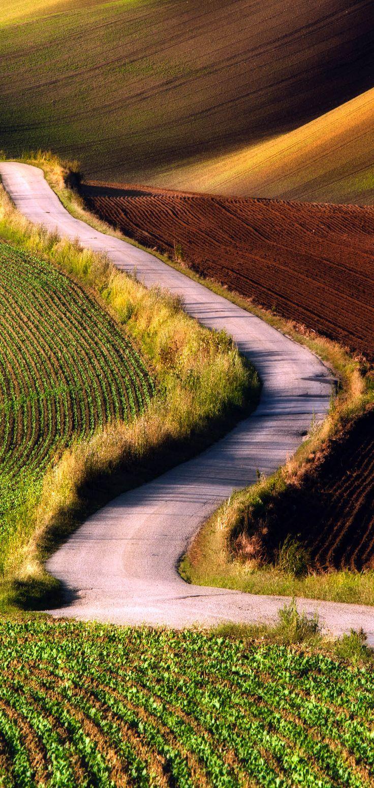 Carretera escénica en el sur de Moravia, República Checa