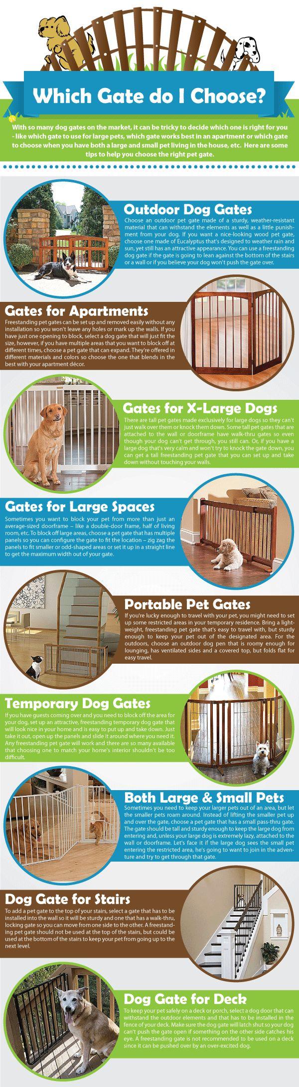 The best Buddy Bob Fletcher ideas on Pinterest Dog crossbreeds