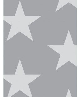 Starry Night Wallpaper - Silver and Grey Arthouse 891301