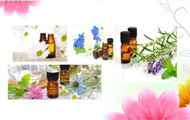 Pin On Essential Oil Supplier