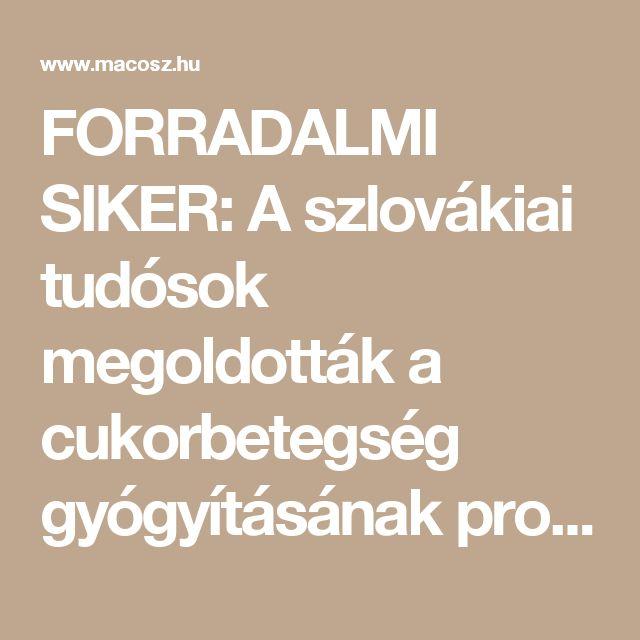 FORRADALMI SIKER: A szlovákiai tudósok megoldották a cukorbetegség gyógyításának problémáját