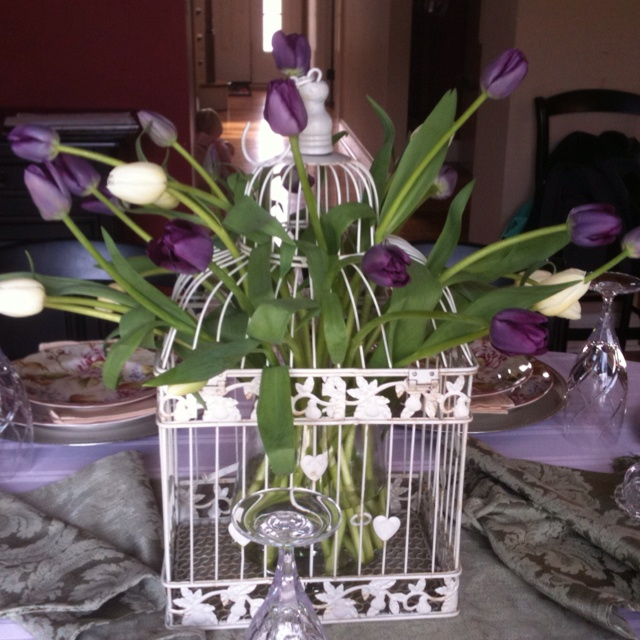 Best images about birdcage ideas on pinterest tulip