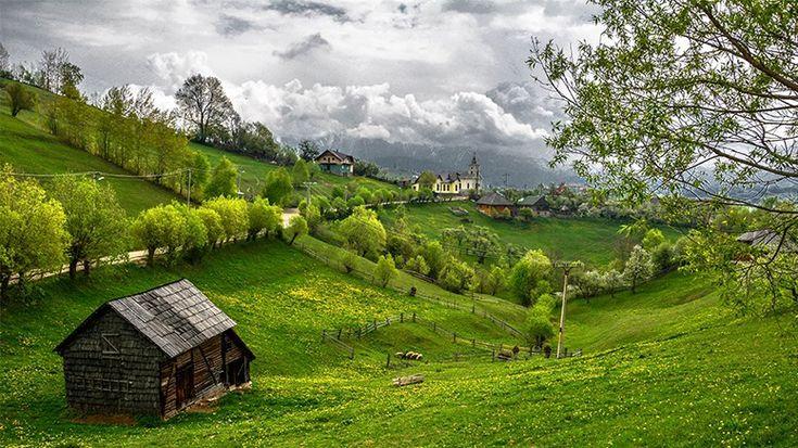 Transilvania 1