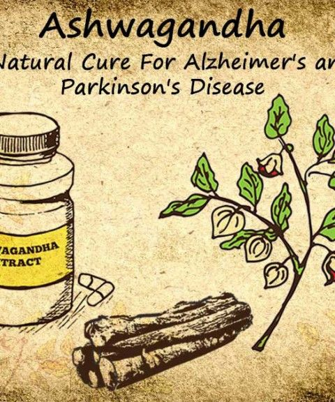 Ashwagandha is beneficial for Alzheimer's and Parkinson's disease because it clears protein plaques, and prevents, repairs and heals brain cell damage.