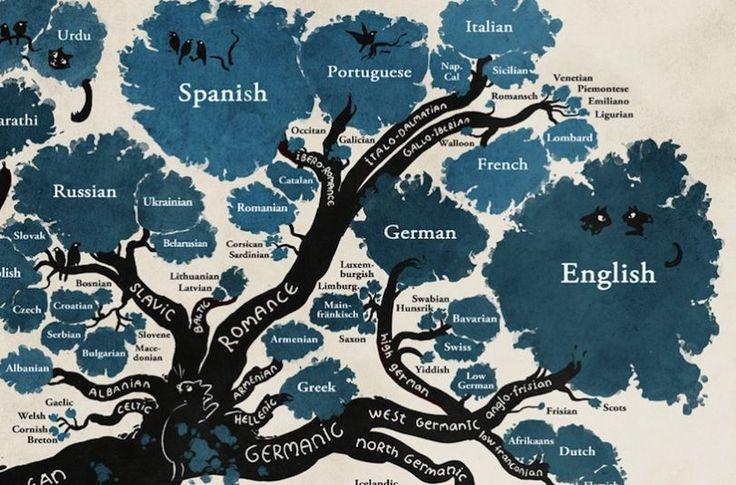 L'illustratrice Minna Sundberg a dessiné un superbe arbre généalogique des langues indo-européennes et ouraliennes.