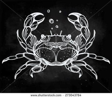 Stone Crab - vintage engraved beautiful hand drawn isolated vector illustration Horoscope cancer star sign Marine life element Line art tattoo template Seafood menu, educationChalk on blackboard - Shutterstock