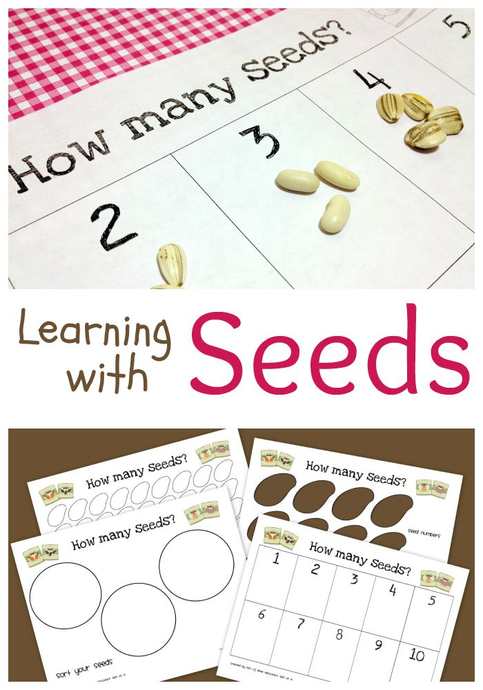 Learning with Seeds Printables includes Activity & Book Ideas #plantaseed