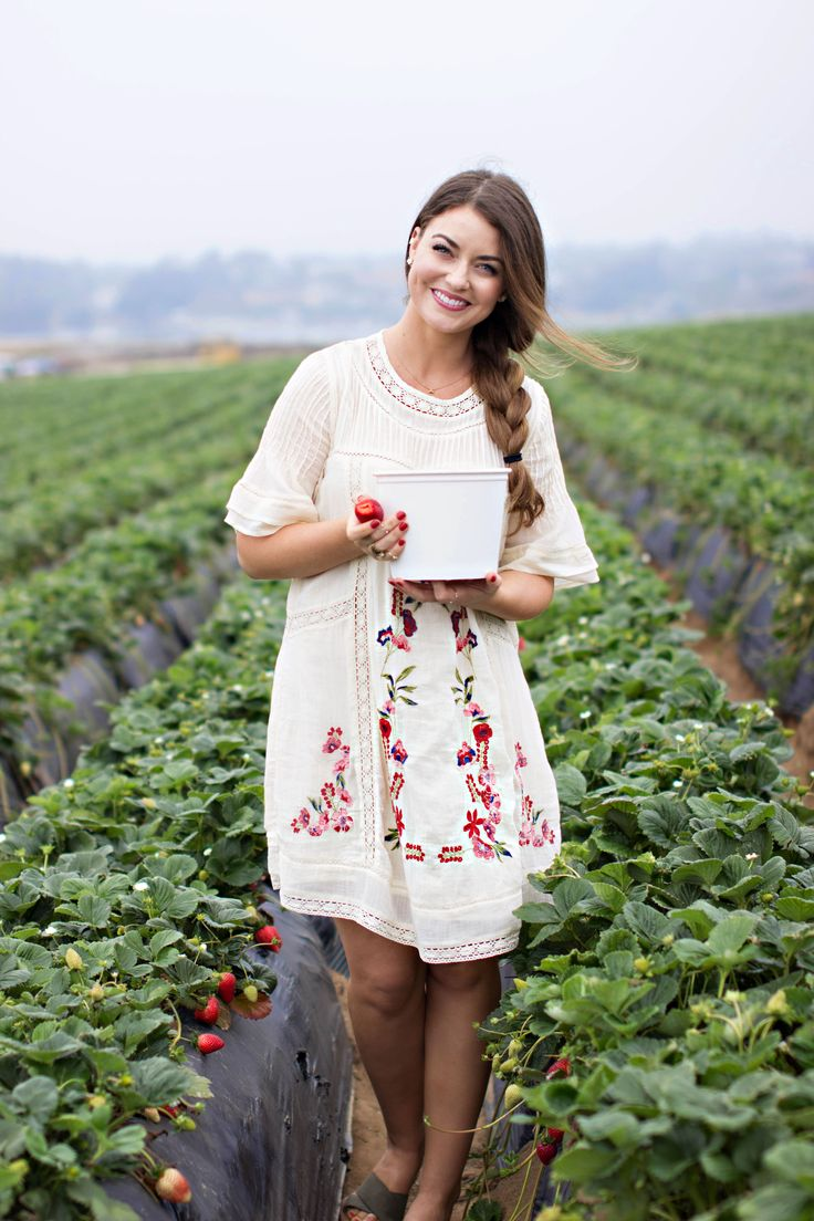 Strawberry picking in Carlsbad California