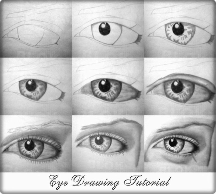 209 best images about figure drawing on pinterest eye for Good drawing tutorials for beginners