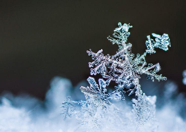 500px 上の Basti Schrödl の写真 Snow