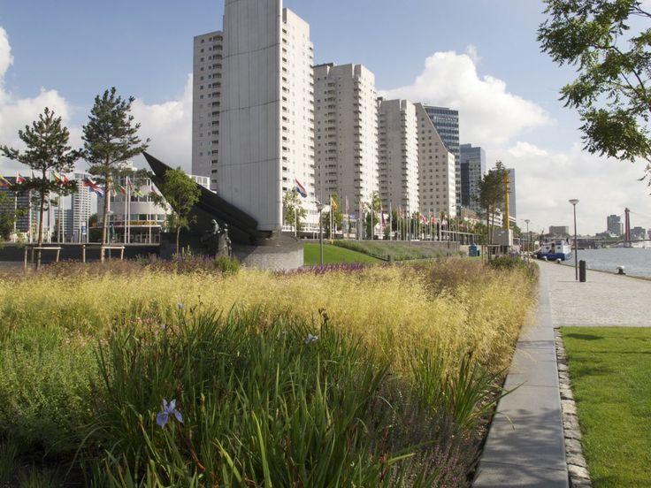 Oudolf.com - Piet Oudolf - Gardens - Public gardens - Leuvehoofd, Rotterdam - Leuvehoofd, Rotterdam
