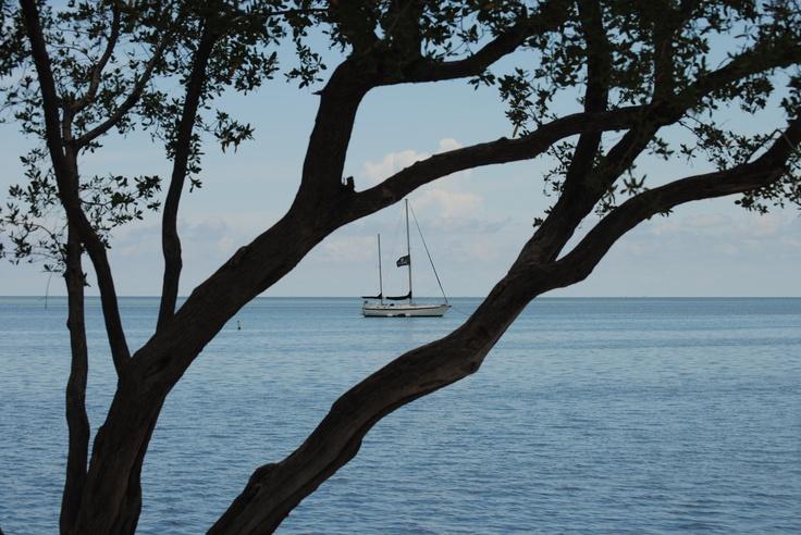 Pirate Ship Isla Morada