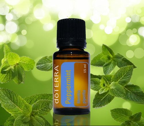 Healing Heart Oils: Get Rid of Ants and other Pests using Doterra Essential Oils