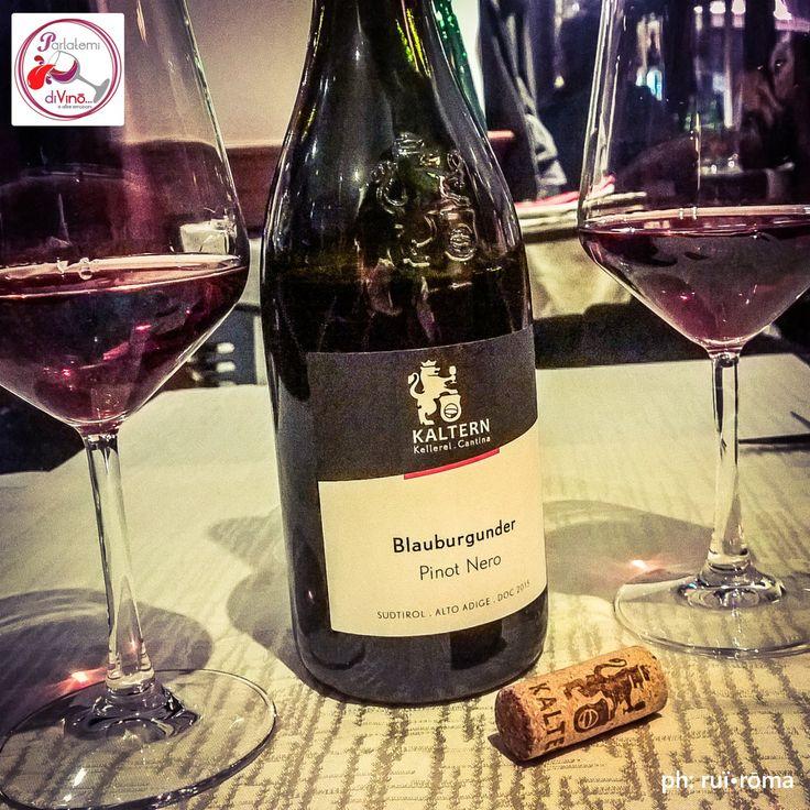 Parlatemi di vino... Blauburgunder, Pinot Nero DOC, Cantina Kellerei Kaltern, Südtirol - Alto Adige #pinot #pinotnoir #Blauburgunder #doc #KellereiKaltern #Kaltern #altoadige #rosso #red #italianwine #vinoitaliano #wine #glass #instagood #redwine #Italy #style #excellent #winelover #winespectrum #instawine #solocosebuone  #ruiroma #parlatemidivino https://www.facebook.com/parlatemidivino