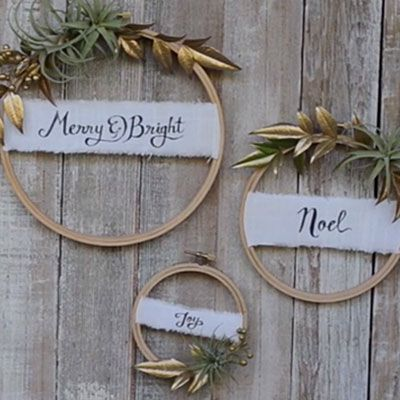 How to make an air plant wreath: http://www.sunset.com/home/decorating/tillandsia