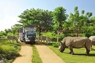 Bali Safari & Marine Life Park