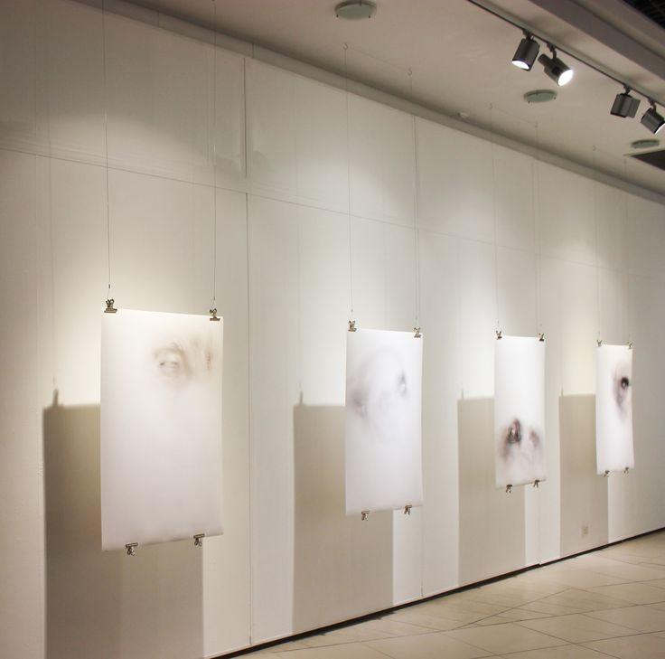 Featuring artist: Megan Erasmus. Unisa Art Gallery, Masters in Visual Arts Student Exhibition 2015