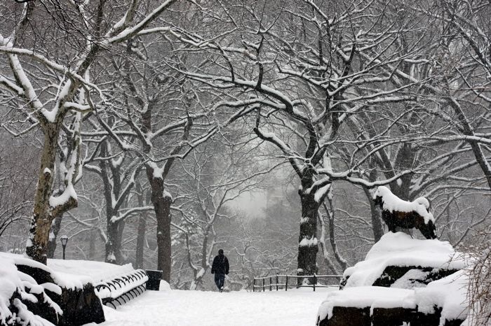 The first snow fall inspires us to go out and have fun in the snow! http://renegadechicks.com/5-ways-to-celebrate-snowy-weather/