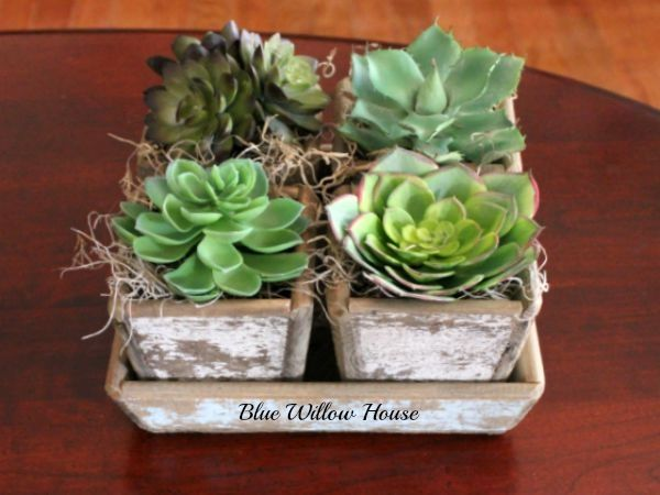 Quick and Easy Succulent Centerpiece in Chippy Thrifty Find | The Blue Willow House