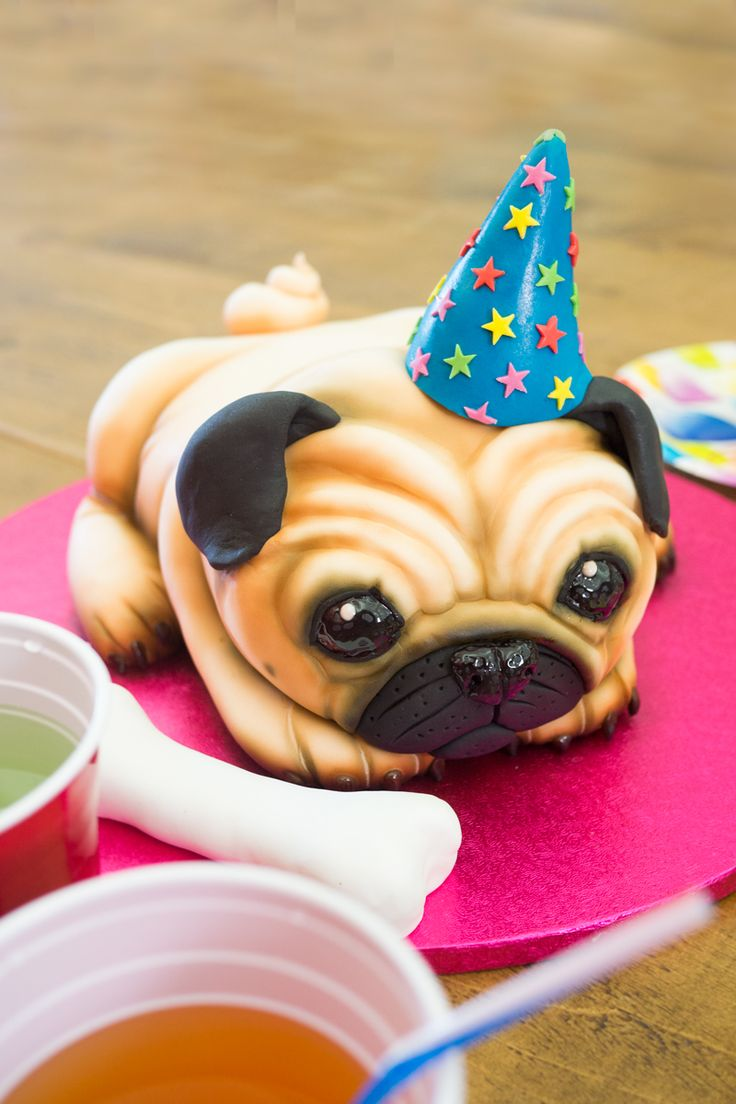 Pug Dog Cake Tutorial - Paul Bradford Sugarcraft School - For all your Dog cake decorating supplies, please visit http://www.craftcompany.co.uk/catalogsearch/result/?q=dog&order=relevance&dir=desc