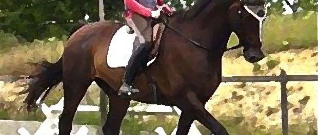 The Definition of Natural Dressage